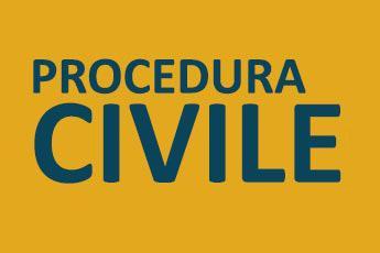 Consulenza legale in materia di processo civile